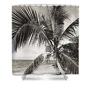 Hawaii Ocean Palm Shower Curtain