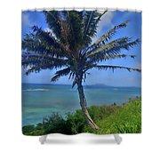 Hawaii Palm Shower Curtain