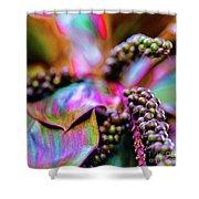 Hawaii Plants And Flowers - Tropics Shower Curtain