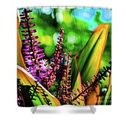 Hawaii Ti Leaf Plant And Flowers Shower Curtain
