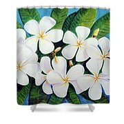 Hawaii Tropical Plumeria Flower  # 220 Shower Curtain