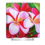 Hawaii Tropical Plumeria Flower #212 Shower Curtain