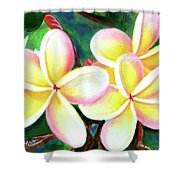 Hawaii Tropical Plumeria Flower #213 Shower Curtain