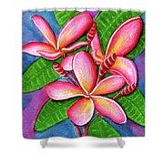 Hawaii Tropical Plumeria Flower #243 Shower Curtain