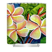 Hawaii Tropical Plumeria  Flower #314 Shower Curtain