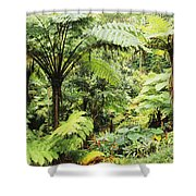 Hawaii Tropical Rainfores Shower Curtain