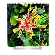 Hawaiian Beauty 3 Shower Curtain