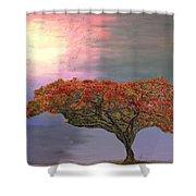 Hawaiian Flame Tree Shower Curtain