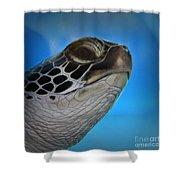 Hawaiian Honu Shower Curtain