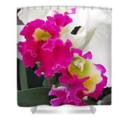 Hawaiian Orchid 10 Shower Curtain