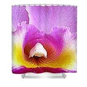 Hawaiian Orchid 9 Shower Curtain