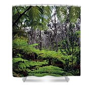 Hawaiian Rainforest Shower Curtain