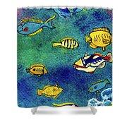 Hawaiian Reef  Fish #223 Shower Curtain