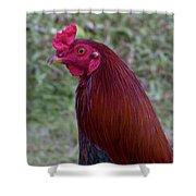 Hawaiian Rooster Shower Curtain