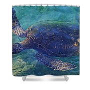 Hawaiian Sea Turtle Shower Curtain