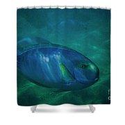 Hawaiian Tang Fish Shower Curtain
