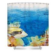 Hawaiian Triggerfish Shower Curtain