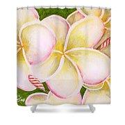 Hawaiian Tropical Plumeria Flower #483 Shower Curtain
