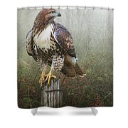 Hawk And Barbed Wire Shower Curtain