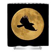 Hawk Flying By Full Moon Shower Curtain