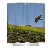 Hawk Flying Over Field Of Yellow Mustard Shower Curtain