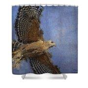 Hawk In Flight Shower Curtain