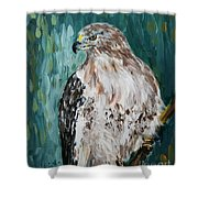 Hawk Shower Curtain by Maria Langgle