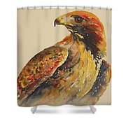 Hawk Messenger Shower Curtain
