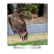 Hawk On The Fly Shower Curtain