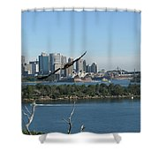 Hawk Over Sydney Harbour Shower Curtain