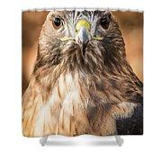 Hawk Eyes Shower Curtain