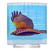Hawk Speed Shower Curtain