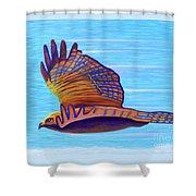 Hawk Speed Shower Curtain