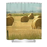 Hay Bails Shower Curtain