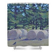 Hay Bales And Crows Shower Curtain