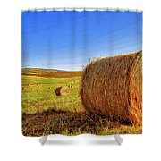 Hay Bales Shower Curtain by Dominic Piperata