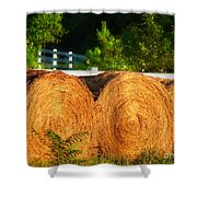 Hay Bales Shower Curtain by Todd A Blanchard