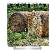 Hay Bay Rolls 3 Shower Curtain