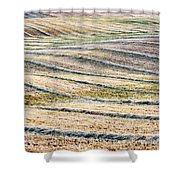Hay Billows II Shower Curtain
