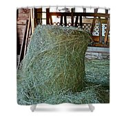 Hay Is For Horses Shower Curtain