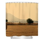 hay rolls  Shower Curtain by Stylianos Kleanthous