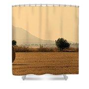 Hay Rolls  Shower Curtain by Stelios Kleanthous
