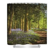 Hay Wood Bluebells 3 Shower Curtain