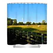 Hayfield With Distant Cell Tower Shower Curtain