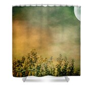 Haze On Moonlit Meadow Shower Curtain
