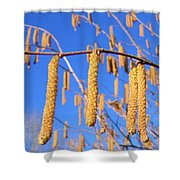 Hazelnut Tassels Shower Curtain