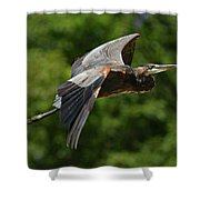 GBH Shower Curtain