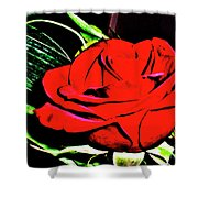 hdr 263 - Red Red Rose  Shower Curtain