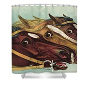 Head And Head At The Winning Post Shower Curtain