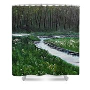 Head For The Forest Shower Curtain